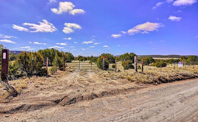 0 Mcnabb And Magic Mist Road, Moriarty, NM 87035 (MLS #985810) :: Keller Williams Realty
