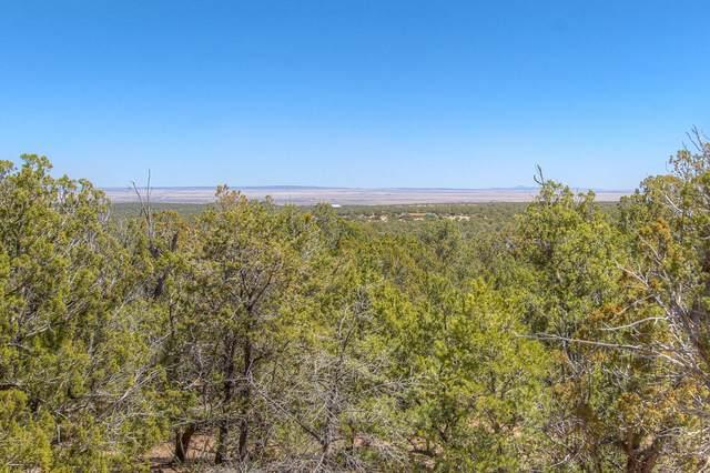 44 Starview Trail, Edgewood, NM 87015 (MLS #989541) :: Keller Williams Realty