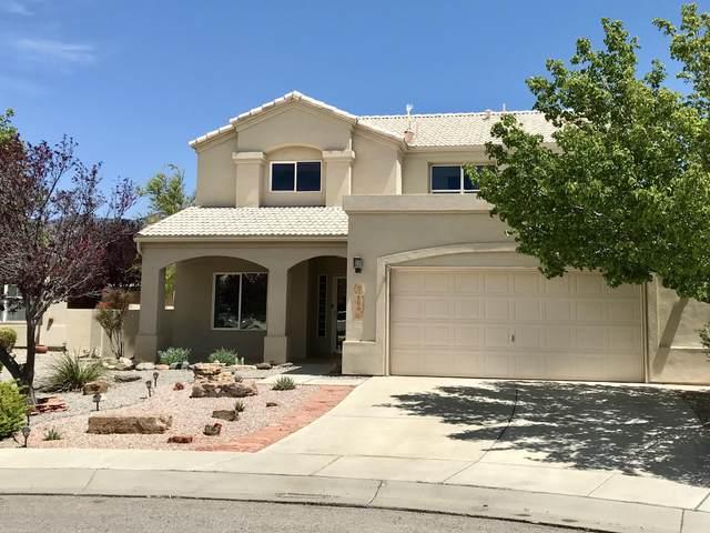 504 Winema Court SE, Albuquerque, NM 87123 (MLS #990027) :: The Buchman Group