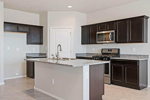 4309 Skyline Loop NE, Rio Rancho, NM 87144 (MLS #990192) :: Berkshire Hathaway HomeServices Santa Fe Real Estate