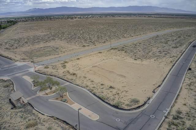 1150 Vista De Bosque, Los Lunas, NM 87031 (MLS #990964) :: Sandi Pressley Team