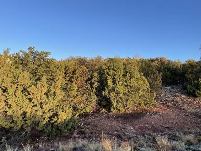 15 Tigua Drive, Sandia Park, NM 87047 (MLS #991071) :: Sandi Pressley Team