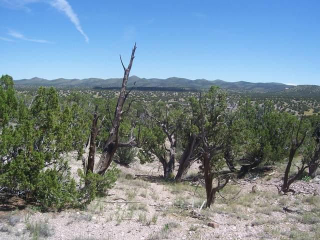 52 Camino Del Sueno, Magdalena, NM 87825 (MLS #991620) :: Campbell & Campbell Real Estate Services