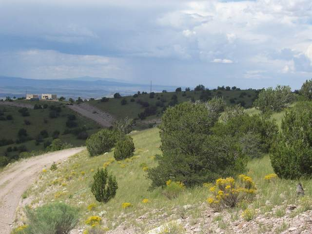 123 Ridge View Road, Magdalena, NM 87825 (MLS #993060) :: Campbell & Campbell Real Estate Services