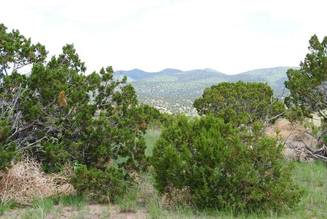 67 Fs 123, Magdalena, NM 87825 (MLS #993221) :: Campbell & Campbell Real Estate Services