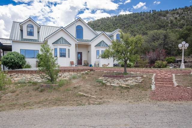 61 Pinon Trail, Cedar Crest, NM 87008 (MLS #993248) :: Campbell & Campbell Real Estate Services