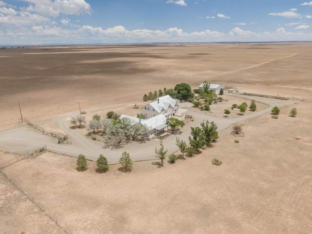3660 Highway 41, Stanley, NM 87056 (MLS #993300) :: Campbell & Campbell Real Estate Services