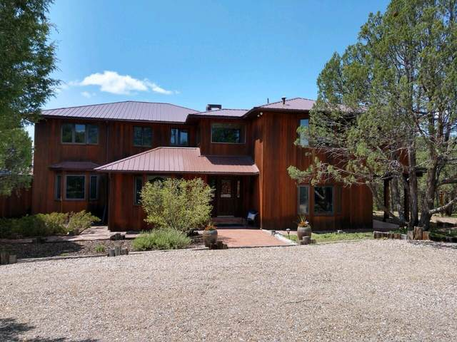 49 Ranch Road, Cedar Crest, NM 87008 (MLS #994048) :: Campbell & Campbell Real Estate Services