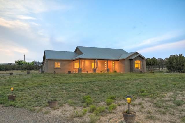 20 Camino Coyote, Edgewood, NM 87015 (MLS #996614) :: The Buchman Group