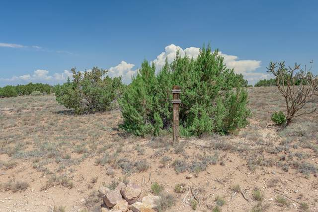 77 Creekside Trail, Sandia Park, NM 87047 (MLS #997828) :: Campbell & Campbell Real Estate Services