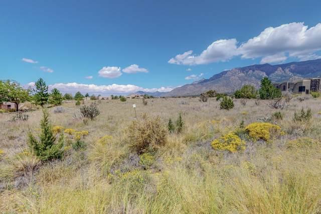 13515 Pino Ridge Place NE, Albuquerque, NM 87111 (MLS #998928) :: Campbell & Campbell Real Estate Services