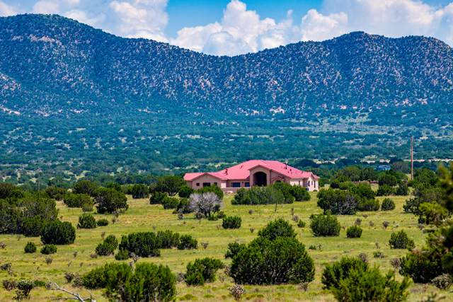 337 Scholle Road, Socorro, NM 87801 (MLS #999909) :: Campbell & Campbell Real Estate Services