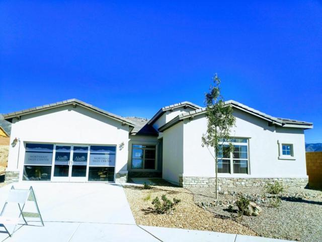 8100 Ronan Court NE, Albuquerque, NM 87122 (MLS #898572) :: Will Beecher at Keller Williams Realty