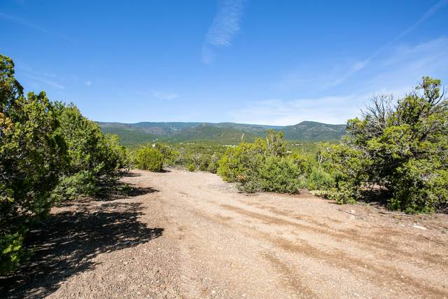 La Vista Grande, Sandia Park, NM 87047 (MLS #908772) :: The Buchman Group