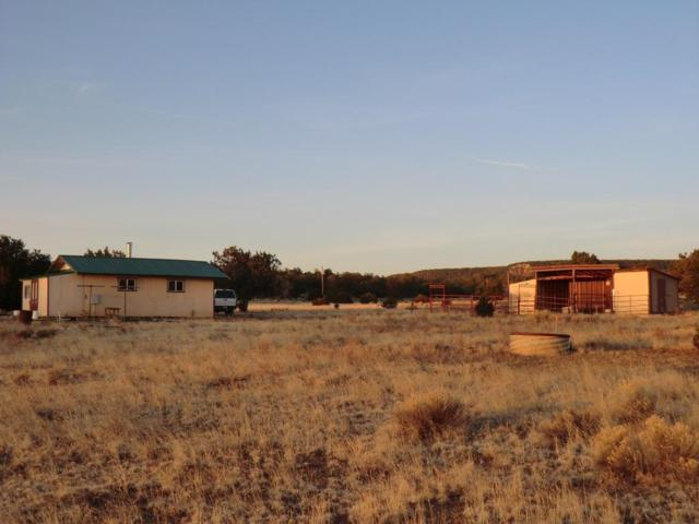 71 Mountain View Road, Pie Town, NM 87827 (MLS #917179) :: The Bigelow Team / Realty One of New Mexico