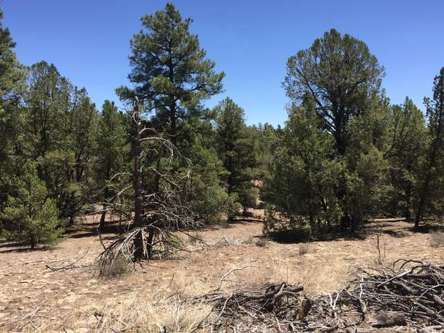 Lot 11 Fox - Timberlake Road, Ramah, NM 87321 (MLS #919354) :: The Buchman Group