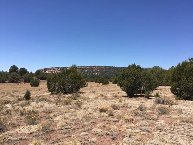 Lot 21 Copperweed Road, Ramah, NM 87321 (MLS #919506) :: The Buchman Group