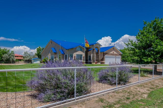32 Blackberry Lane, Los Lunas, NM 87031 (MLS #923672) :: Silesha & Company