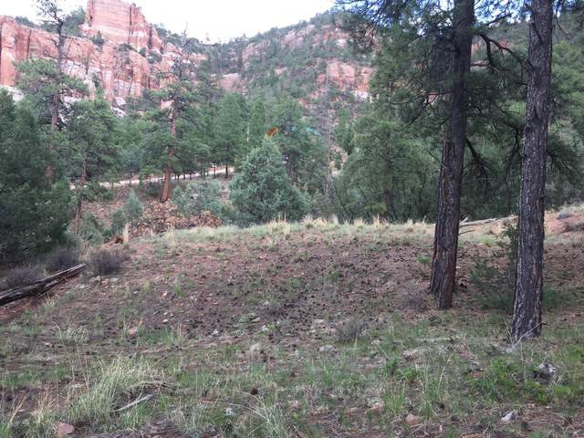 Lot 9 Cliffrose Court, Ramah, NM 87321 (MLS #926006) :: The Bigelow Team / Red Fox Realty