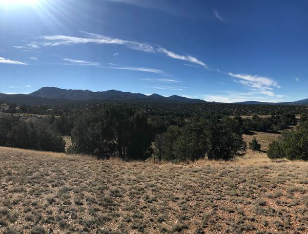 25 Stagecoach Trail, Sandia Park, NM 87047 (MLS #931009) :: Berkshire Hathaway HomeServices Santa Fe Real Estate