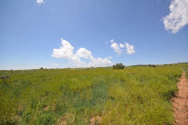 5 Camino Del Prado Loop, Sandia Park, NM 87047 (MLS #936189) :: The Buchman Group