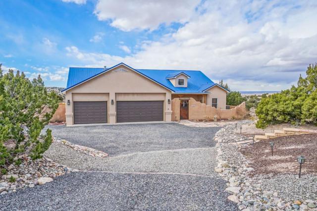 6 Indian Flats Road, Placitas, NM 87043 (MLS #937759) :: Your Casa Team