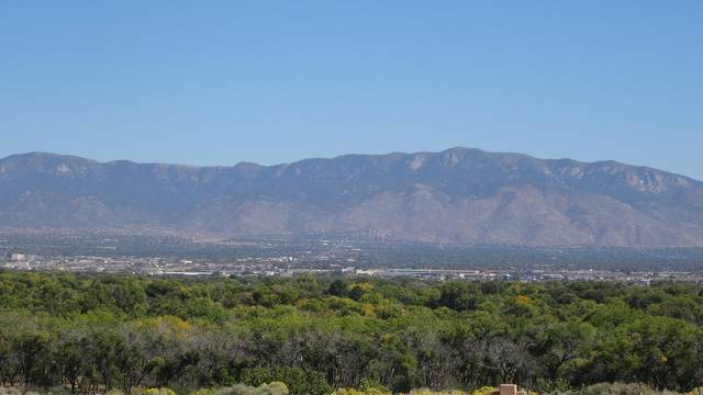 5008 Cinnamon Teal Court NW, Albuquerque, NM 87120 (MLS #947873) :: Keller Williams Realty