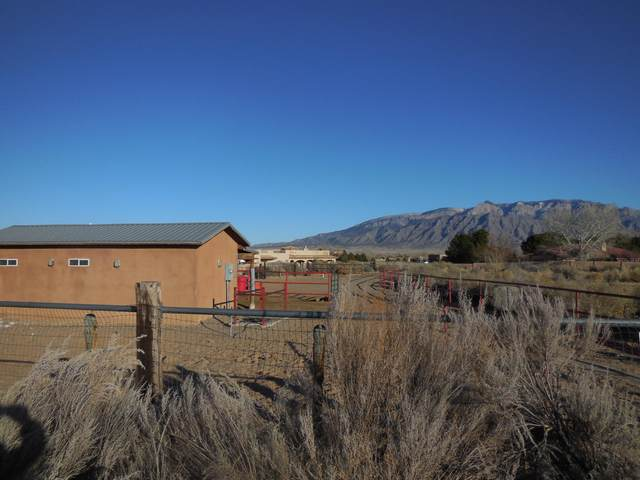 100 Keira Court, Corrales, NM 87048 (MLS #959278) :: Campbell & Campbell Real Estate Services