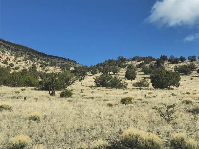 44&45 Rock Springs Loop, Datil, NM 87821 (MLS #963142) :: Keller Williams Realty