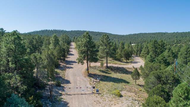 10 Fisher Road, Tijeras, NM 87059 (MLS #968389) :: Keller Williams Realty