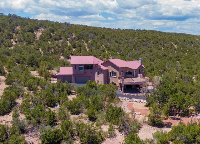 928 New Mexico State 165 Road, Placitas, NM 87043 (MLS #969325) :: Berkshire Hathaway HomeServices Santa Fe Real Estate
