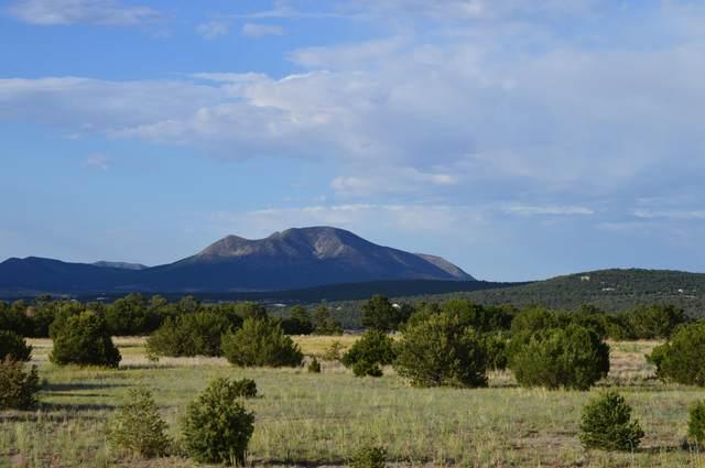 29 Mustang Mesa Trail, Tijeras, NM 87059 (MLS #970229) :: Berkshire Hathaway HomeServices Santa Fe Real Estate