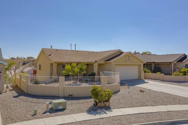 10412 Don Giovanni Place NW, Albuquerque, NM 87114 (MLS #976621) :: The Bigelow Team / Red Fox Realty