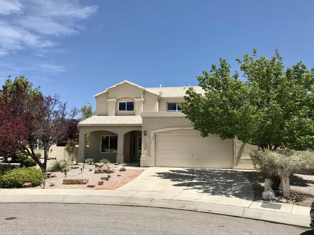 504 Winema Court SE, Albuquerque, NM 87123 (MLS #995984) :: Keller Williams Realty