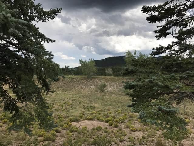 75 Canon Madera Road, Sandia Park, NM 87047 (MLS #900284) :: Berkshire Hathaway HomeServices Santa Fe Real Estate
