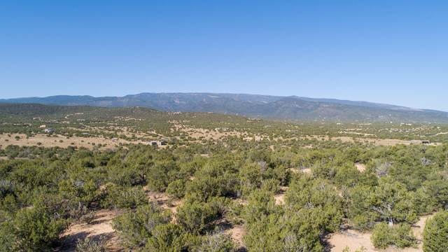 5 Vista De Sandia, Sandia Park, NM 87047 (MLS #954217) :: Keller Williams Realty