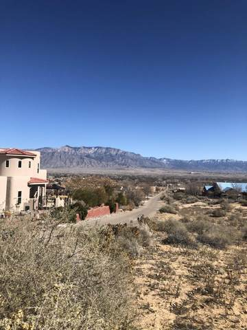 B1B Loma Alto Court, Corrales, NM 87048 (MLS #963730) :: Campbell & Campbell Real Estate Services