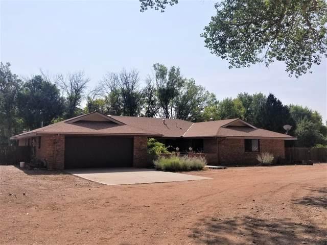 500 Encantada Lane, Bosque Farms, NM 87068 (MLS #981744) :: Sandi Pressley Team