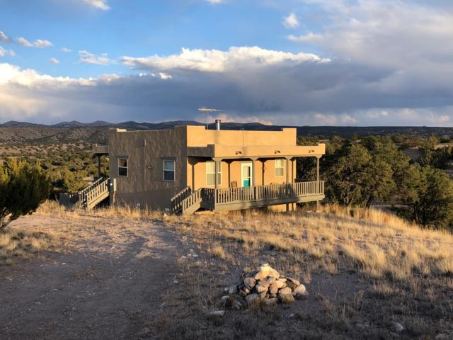 277 Pinon Springs Road, Magdalena, NM 87825 (MLS #909789) :: Campbell & Campbell Real Estate Services
