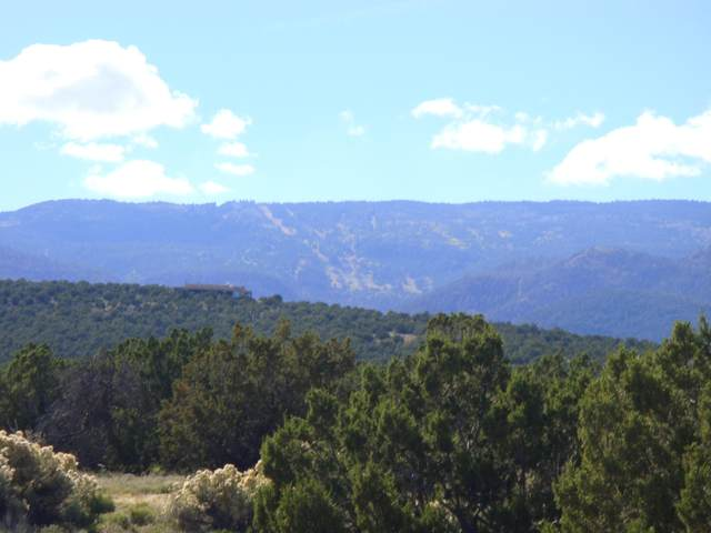 0 Via Entrada, Sandia Park, NM 87047 (MLS #931493) :: The Bigelow Team / Red Fox Realty