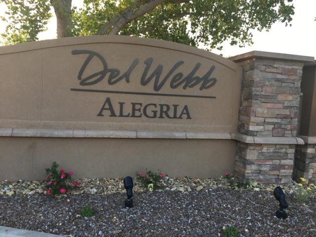 920 Mountain Phlox Way NW, Bernalillo, NM 87004 (MLS #937955) :: Campbell & Campbell Real Estate Services