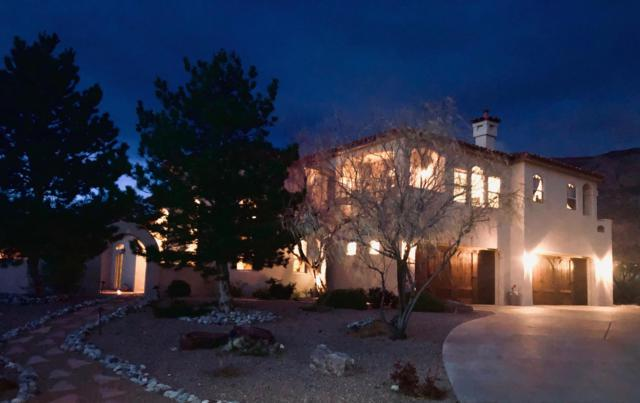 11801 Coyote Run Road NE, Albuquerque, NM 87122 (MLS #938714) :: Campbell & Campbell Real Estate Services