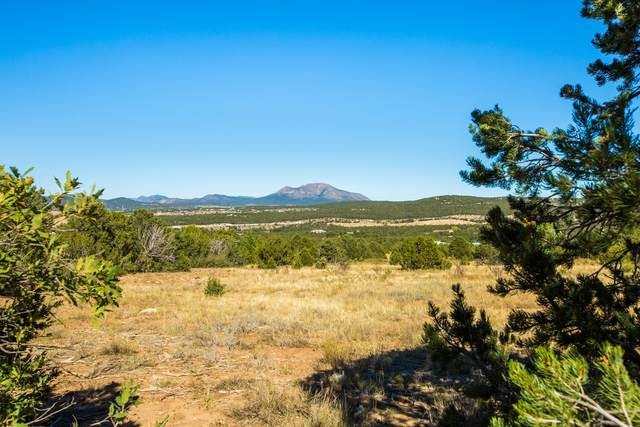 64 Nature Pointe Drive, Tijeras, NM 87059 (MLS #975269) :: Keller Williams Realty