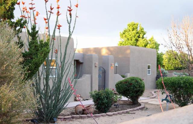 106 Thanes Way, Corrales, NM 87048 (MLS #995172) :: Campbell & Campbell Real Estate Services