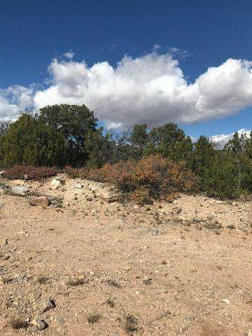 45C Sweetrock Road, Edgewood, NM 87015 (MLS #1000021) :: Campbell & Campbell Real Estate Services