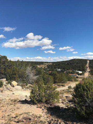 45F Sweetrock Road, Edgewood, NM 87015 (MLS #1000040) :: Campbell & Campbell Real Estate Services