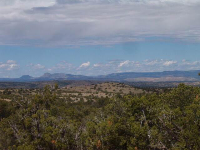 45 Camino Del Sueno, Magdalena, NM 87825 (MLS #1000106) :: Campbell & Campbell Real Estate Services