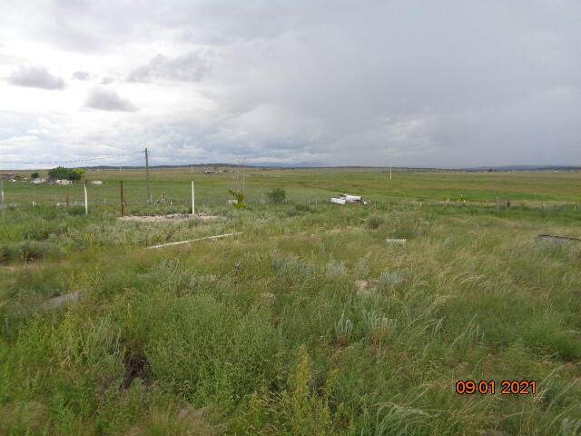 15 Tatonka Lane, Moriarty, NM 87035 (MLS #1000210) :: Campbell & Campbell Real Estate Services