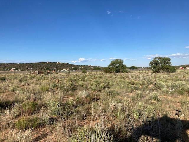 Edgewood, NM 87015 :: Berkshire Hathaway HomeServices Santa Fe Real Estate