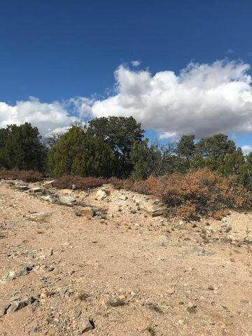 49I Cannelo Road, Edgewood, NM 87015 (MLS #1000285) :: Campbell & Campbell Real Estate Services